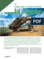 arboles leyendas vivas.pdf