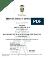 CERTIFICADO ALTURAS