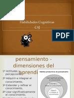 habilidadescognitivas-1233698626573613-1
