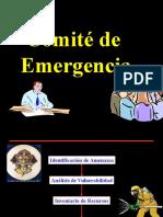 1 comite de emergencia y Brigadas.pptx