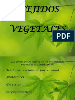diapositivastejidosvegetales-pptx2010-100601191746-phpapp02.pptx