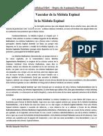 03 Irrigación de La Médula Espinal (1)