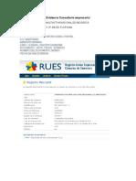 Evidencia Consultorio empresarial