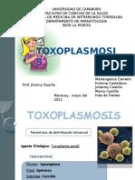 toxoplasmosislista-120213201514-phpapp02