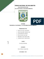 Monografia Desarrollo Sostenible & Contaminación Ambiental - Econ Ambiental - Unsm Fecol