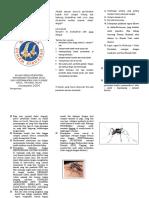 leaflet DHF.doc