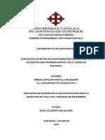 Anteproyecto Martillo y Pacheco Corregido