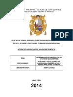 Planchita Del Primer Informe