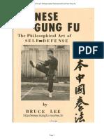 Chinese Gung Fu - Bruce Lee