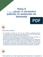 Derecho Procesal Civil III - Tema x