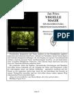 Jan Fries, Visuelle Magie Ein Handbuch Des Freistilschamatismus