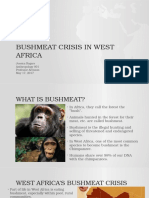 research project bushmeat crisis