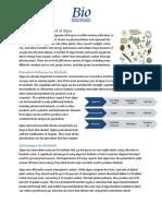 Biofuels_Potential.pdf