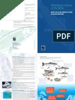 Wild Salmon WWF'S CALL TO ACTION