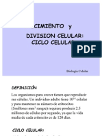 Crecimiento Division Celular