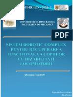 Sinteza_2010.pdf