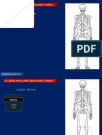 13 - Lesões Articulares, Musculares e Osseas