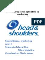 Proiect programe aplicative in marketing.docx