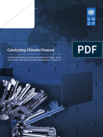UNDP-Catalyzing climate finance.pdf
