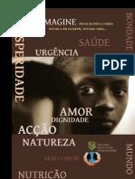 Directrizes NSF-português