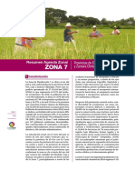 Agenda Zonal 7