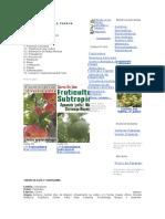 Cultivo de Papayas. Info Agro
