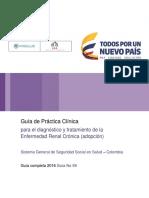 GPC Enfermedad Renal Adopcion