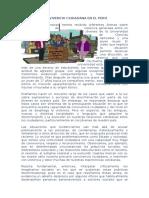 Convivencia Ciudadana en El Perú