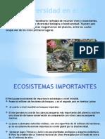 Biodiversidad Del Perú