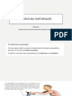 CIENCIAS NATURALES SIST. MUSC.pptx