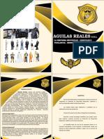 Brochure de Seguridad Aguila