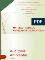 Exp Tema 2 Auditoria Ambiental
