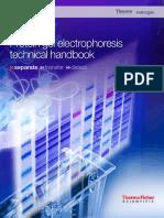 Protein Gel Electrophoresis Technical Handbook