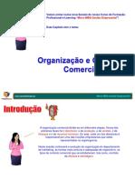 Sessão 7 - Organização e Controlo Comercial