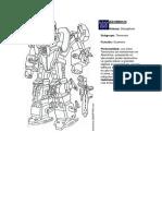 Transformers Universe_by_Rep.pdf