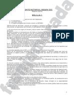Apunte Derecho Notarial - Nuevo CCyC