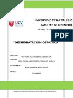 informe-osmodeshidratacion.docx