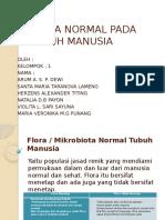 Flora Normal Pada Tubuh Manusia