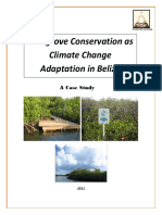 Mangrove Conservationandclimate AdaptationinBelize