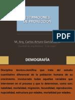 Estimaciones de Proyección 2013