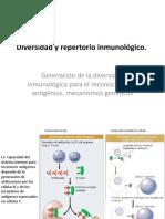 Clase 5 - VIDEO Diversidad inmune.pptx