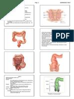 curso-revision-cirugia-2-2017-alumno.pdf.pdf