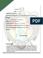 SEGUNDO Informe4