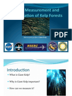 Aerial Classification and Measurement of Kelp Forests