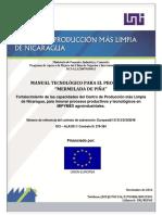 121130 Manual tecnológico Mermelada de Pina.pdf