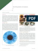 document_11_.pdf