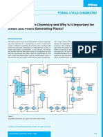 Lesson 1 What Plant Cycle Chemistry and Why Is it Important.pdf