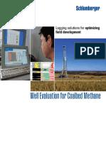cbmwell_evaluation_coalbed_methane_08os141.pdf