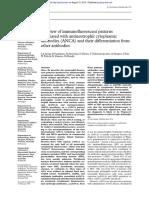A Review of Immunofluorescent Patterns