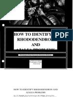 Como Identificar Enfermedades Del Rododendro